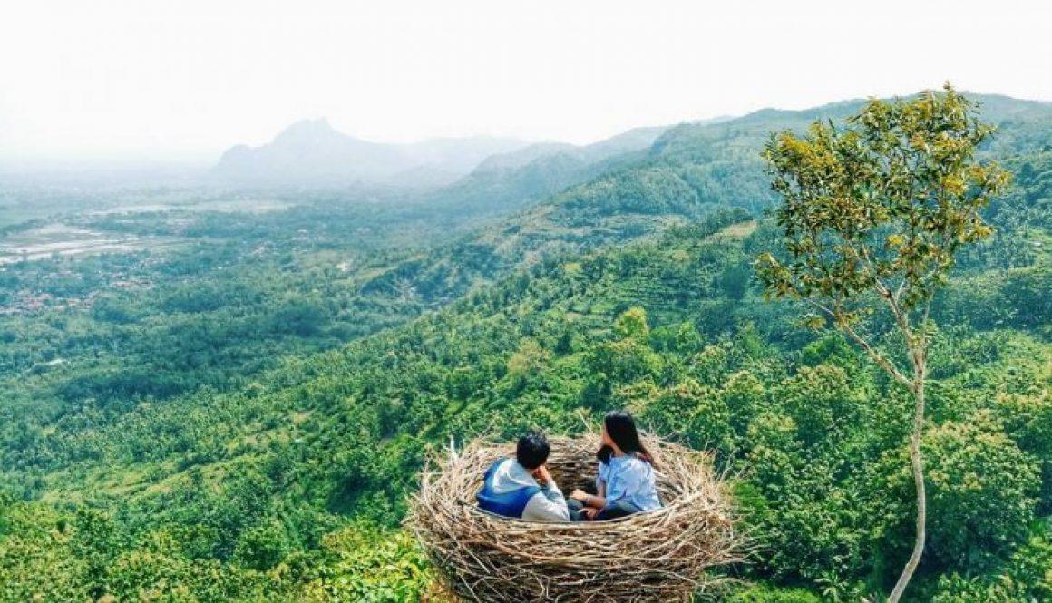 Lokasi Dan Rute Menuju Bukit Jomblo Tulungagung Yang Memiliki Spot Sarang Burung