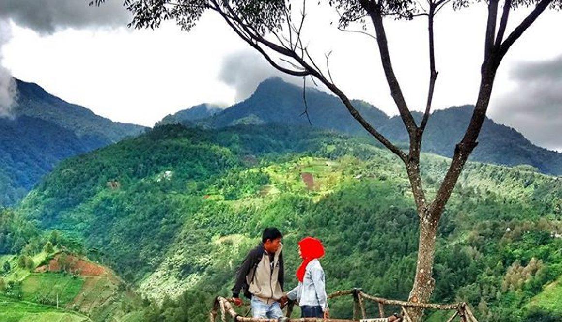 Lokasi Bukit Hope Karanganyar, rumah pohon