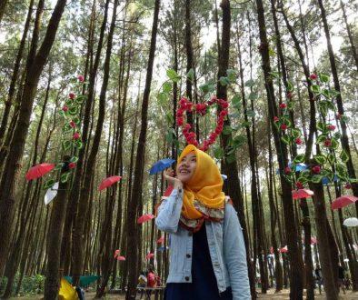 Rute Dan Lokasi Hutan Pinus Semeru Sumberputih Wajak Malang2