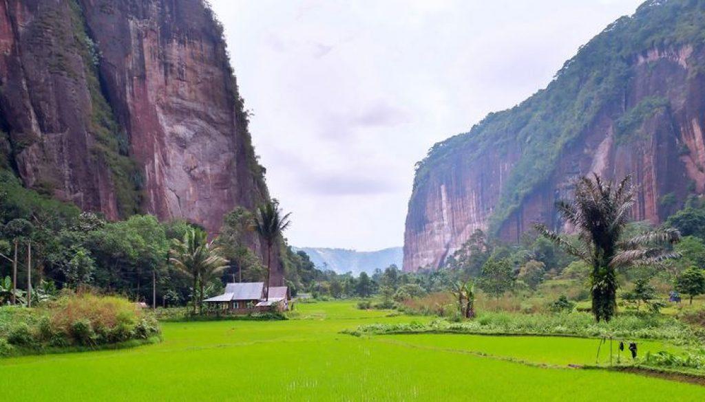 Lokasi Dan Jalan Menuju Lembah Harau
