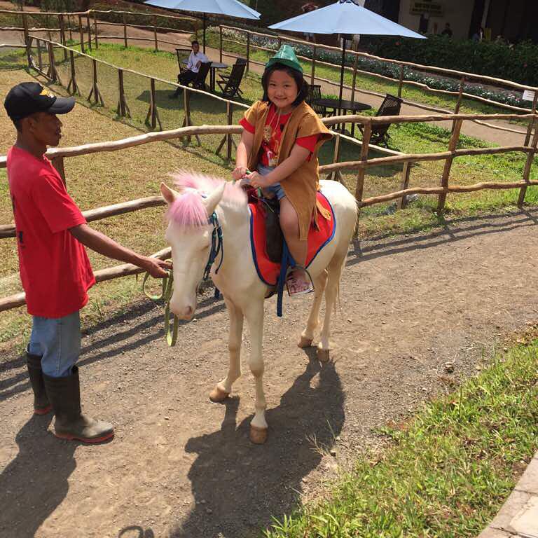 Lokasi Dan Harga Tiket Masuk The Ranch Puncak Bogor