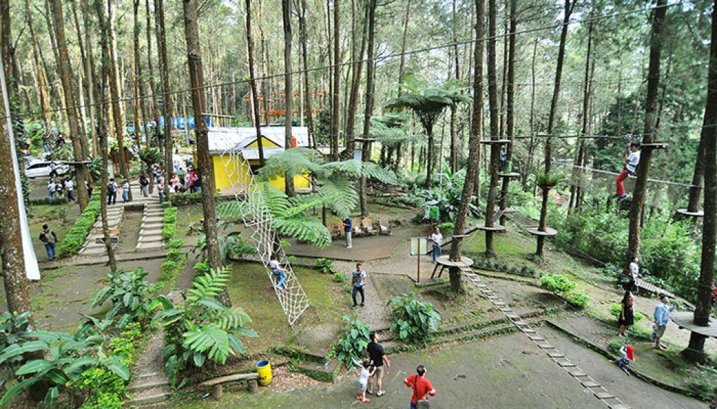 Lokasi Dan Tiket Masuk Kopeng Tree Top