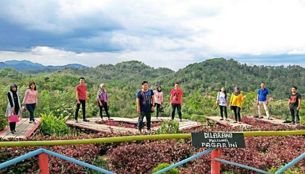 Lokasi Bukit Pangonan Pringsewu
