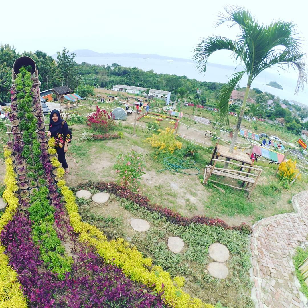 Lokasi Dan Harga Tiket Masuk Villa Gardenia Lampung