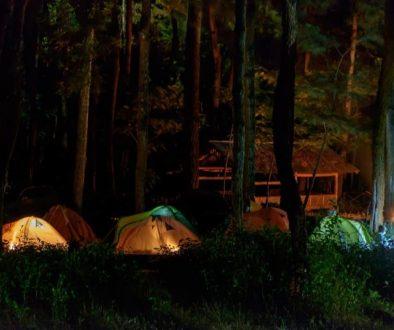 Lokasi Dan Harga Tiket Masuk Ledok Ombo Malang